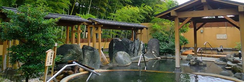 さいたま清河寺温泉 公式ホームページ